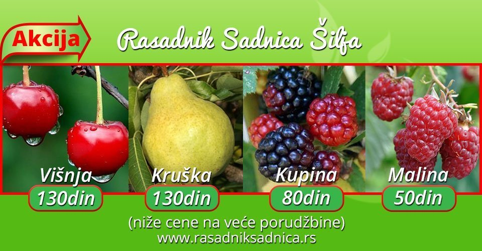 services for agricultural producers,